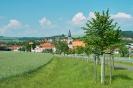 Eichsfeld Worbis_1